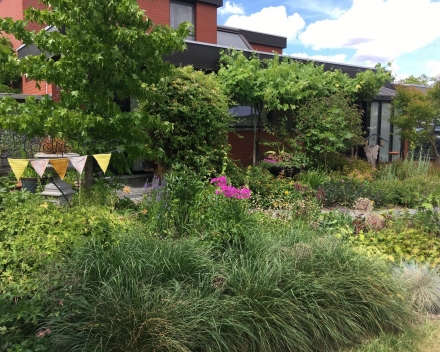 categorie: natuurvriendelijke tuin