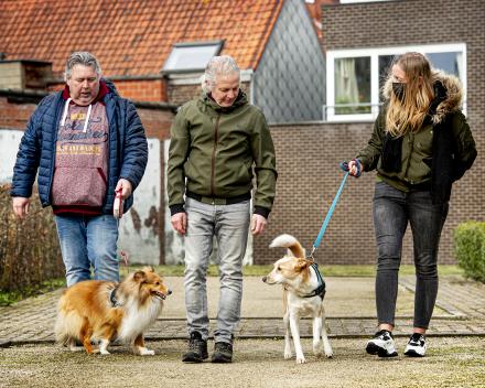 (Honden)wandeling met tal van opdrachten