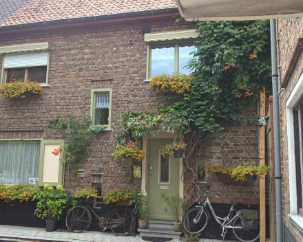 Categorie: Gevelversiering, terrasversiering of balkonversiering